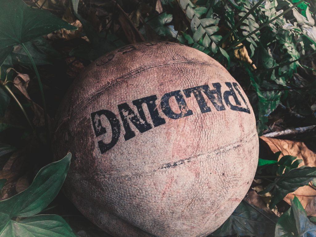 ball basketball leaves 916026
